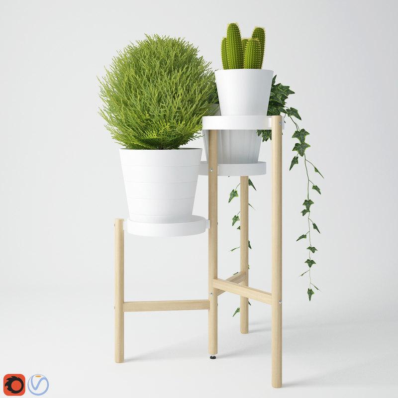 houseplant 10 3D model