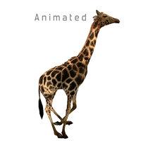 giraffe savannah run 3D model