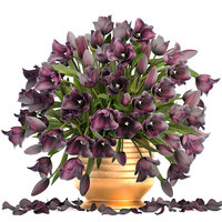 3D bouquet tulips model