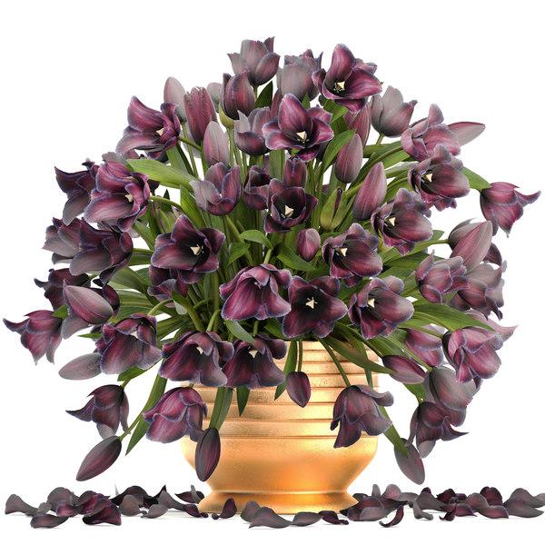 3D bouquet tulips model