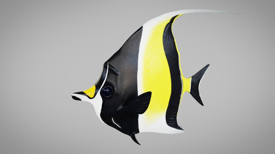 moorish idol 3D