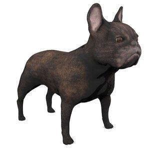 french bulldog 3D model