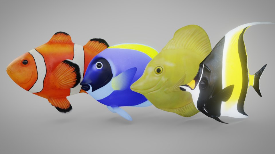 fish rigged 3D