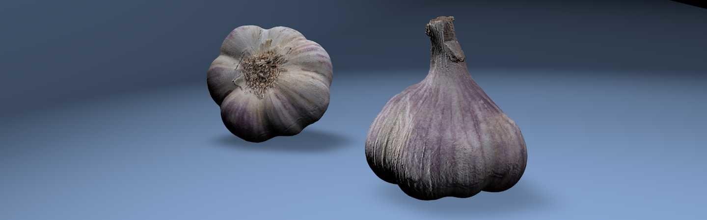 3D model garlic bulb
