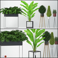 houseplant 13 3D model