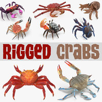 Rigged Crabs 3D Models Collection 3