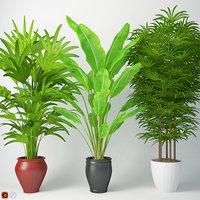 3D model houseplant 14