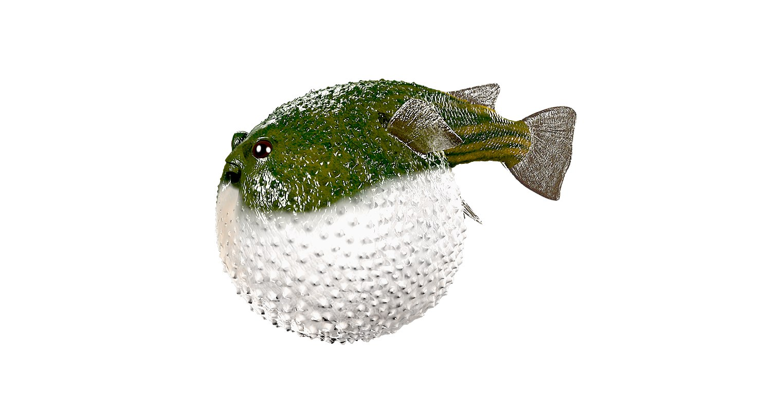 3D animals fish