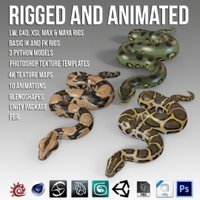 3D pythons animation model