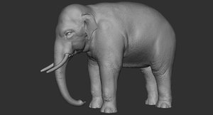 realistic elephant model