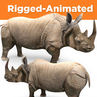 Animated and rigged rhinoceros rhino low poly