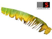 leaf ready 3D