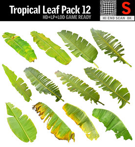 tropical leaf pack 12 model