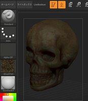 dirty skull obj