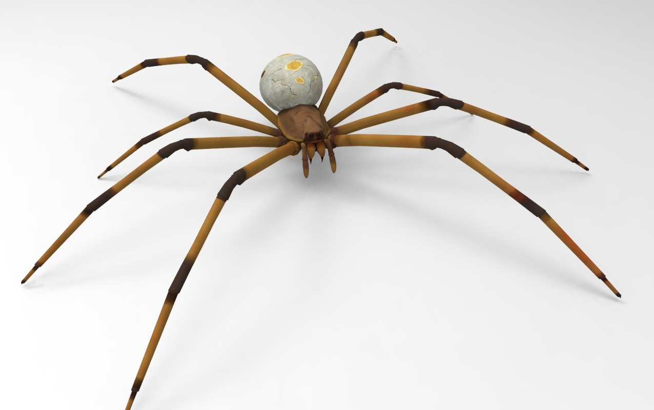 brown widow spider 3D model