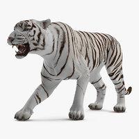 White Tiger Roar 3D Model