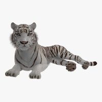 3D lying white tiger fur