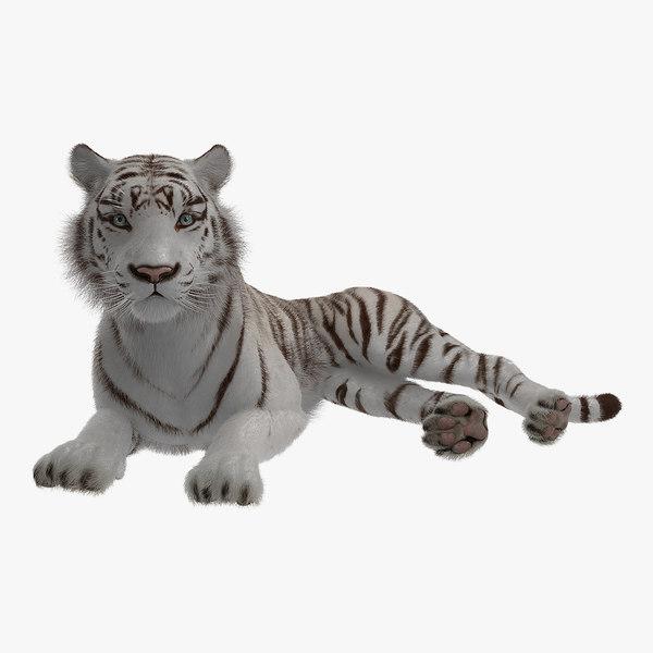 3D lying white tiger fur