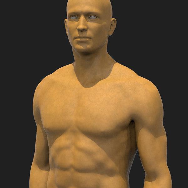 human male basemesh 3D model