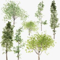 lightwave tree pack animation 3D