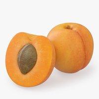 apricot fruit model