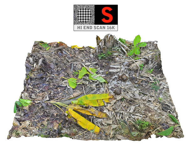 jungle plantation area 3D model