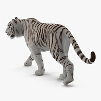 White Tiger Walkig Pose with Fur 3D Model