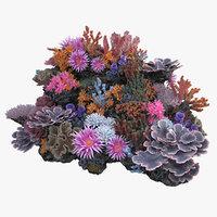 3D model coralreef n 02