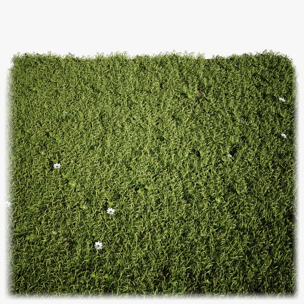 grass lightwave 2018 model