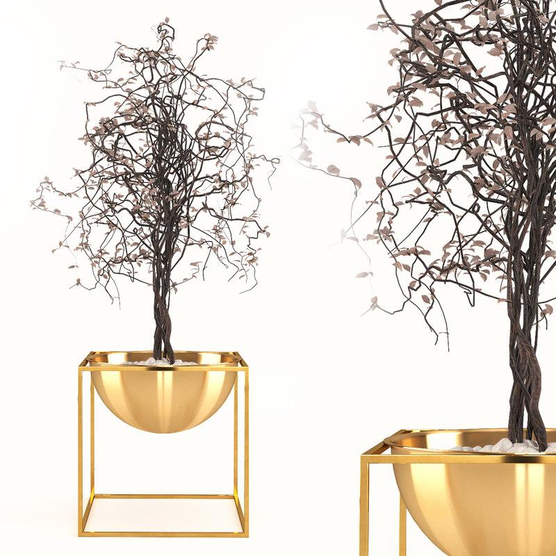 3D dry plant