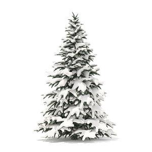 3D spruce tree snow 2 model