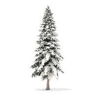 3D model spruce tree snow 6