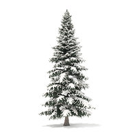 Spruce Tree with Snow 3D Model 8m