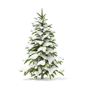 3D fir tree snow 1