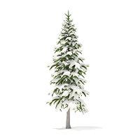 fir tree snow 3 model
