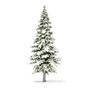 3D model fir tree snow 4