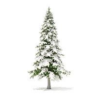 fir tree snow 5 3D model