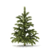 3D pine tree 1 4m