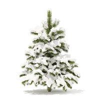 3D pine tree snow 1 model