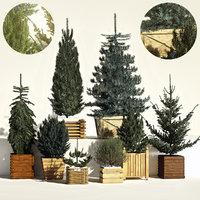 3D model tree furtree
