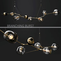 branching burst 6 lindsey 3D model