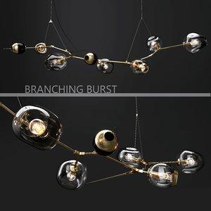 branching burst 6 lindsey 3D model
