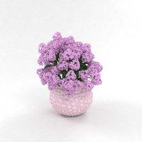 bouquet hydrangea 3D