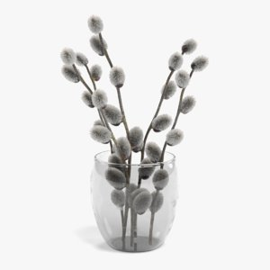 3D willow catkins vase
