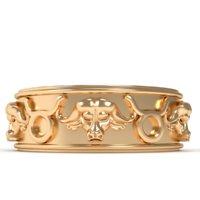 3D ring taurus
