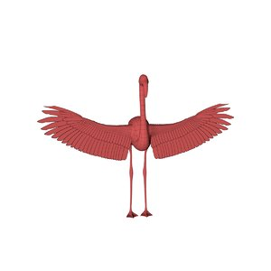 3D base mesh flamingo