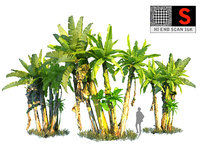 real palm hd 3D model