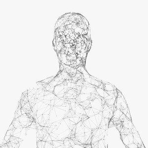 3D model plexus human