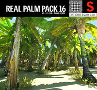 3D real palm hd