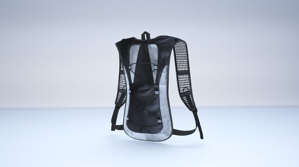 hydration backpack pack 3D model
